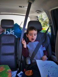 Kids on Taylor Family Roadtrip