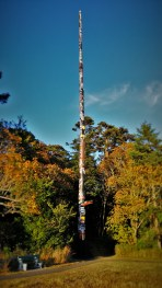Worlds Tallest Totempole Beacon Hill Park Victoria BC 2