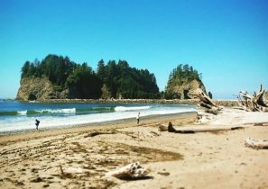 Salt Creek Beack Olympic Peninsula