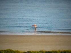 Chris Taylor and LittleMan on Beach at King and Prince Resort St Simons GA 2 (2)