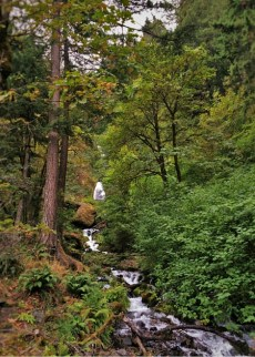 Cascades of Wahkeena Falls Columbia Gorge Oregon 2traveldads.com