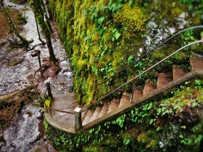 Staircase to Flooding Creek at Oneonta Gorge Columbia Gorge Oregon