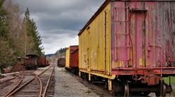 Box Cars in Railroad Graveyard Snoqualmie Washington 1