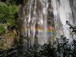 Narada Falls Rainbow Mist in Mt Rainier National Park 2traveldads.com