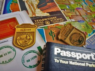 National Parks Swag 4