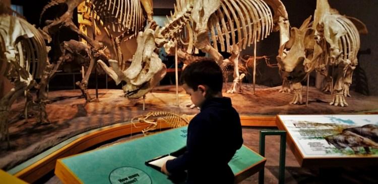 Denver Museum of Nature and Science header 2traveldads.com