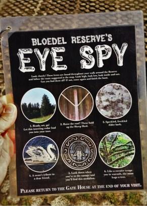 Eye Spy Guide at Bloedel Reserve Bainbridge Island 1 2traveldads.com