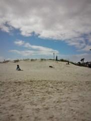 Kids playing on dunes at Jacksonville Beach Florida 1