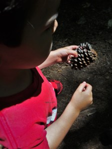 LittleMan and Pinecone at Kennesaw Mountain National Battlefield 1