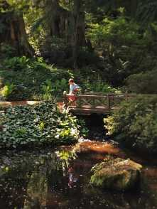 LittleMan on Footbridge at Bloedel Reserve Bainbridge Island 1