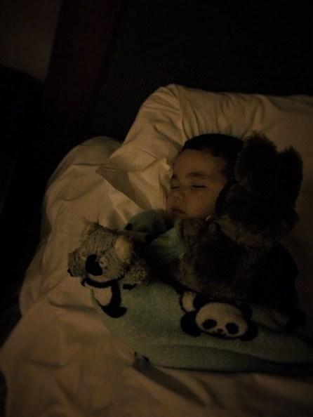 LittleMan sleeping at Inverness Hotel Denver Colorado 1