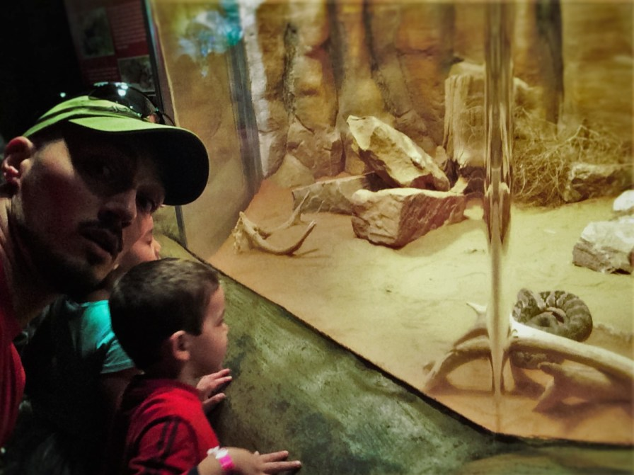 Rob Taylor and LittleMan with Rattlesnake at Denver Downtown Aquarium 1