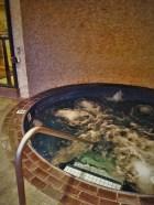 Whirlpool hot tub at Inverness Hotel Denver Colorado 1
