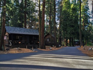 Family Cabins at Evergreen Lodge at Yosemite National Park 2