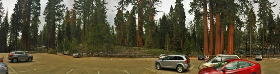 Grant Grove parking area Kings Canyon National Park 2traveldads