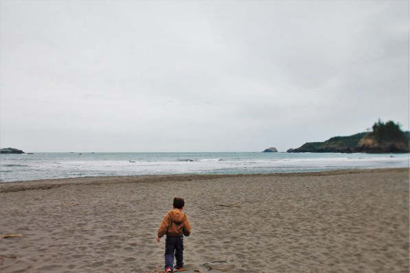 LittleMan at Trinidad Head beach