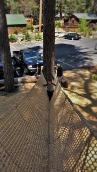 LittleMan on Ropes Course at Evergreen Lodge Yosemite 2traveldads.com
