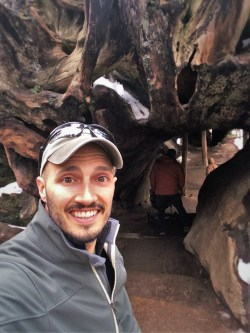 Rob Taylor and Fallen Monarch in Grant Grove in Kings Canyon National Park 1