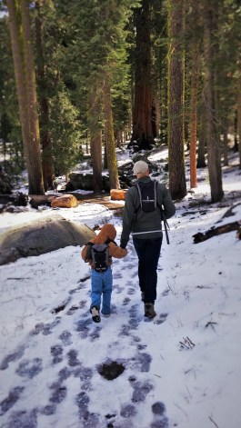 Rob Taylor and LittleMan hiking in Sequoia National Park in snow 5