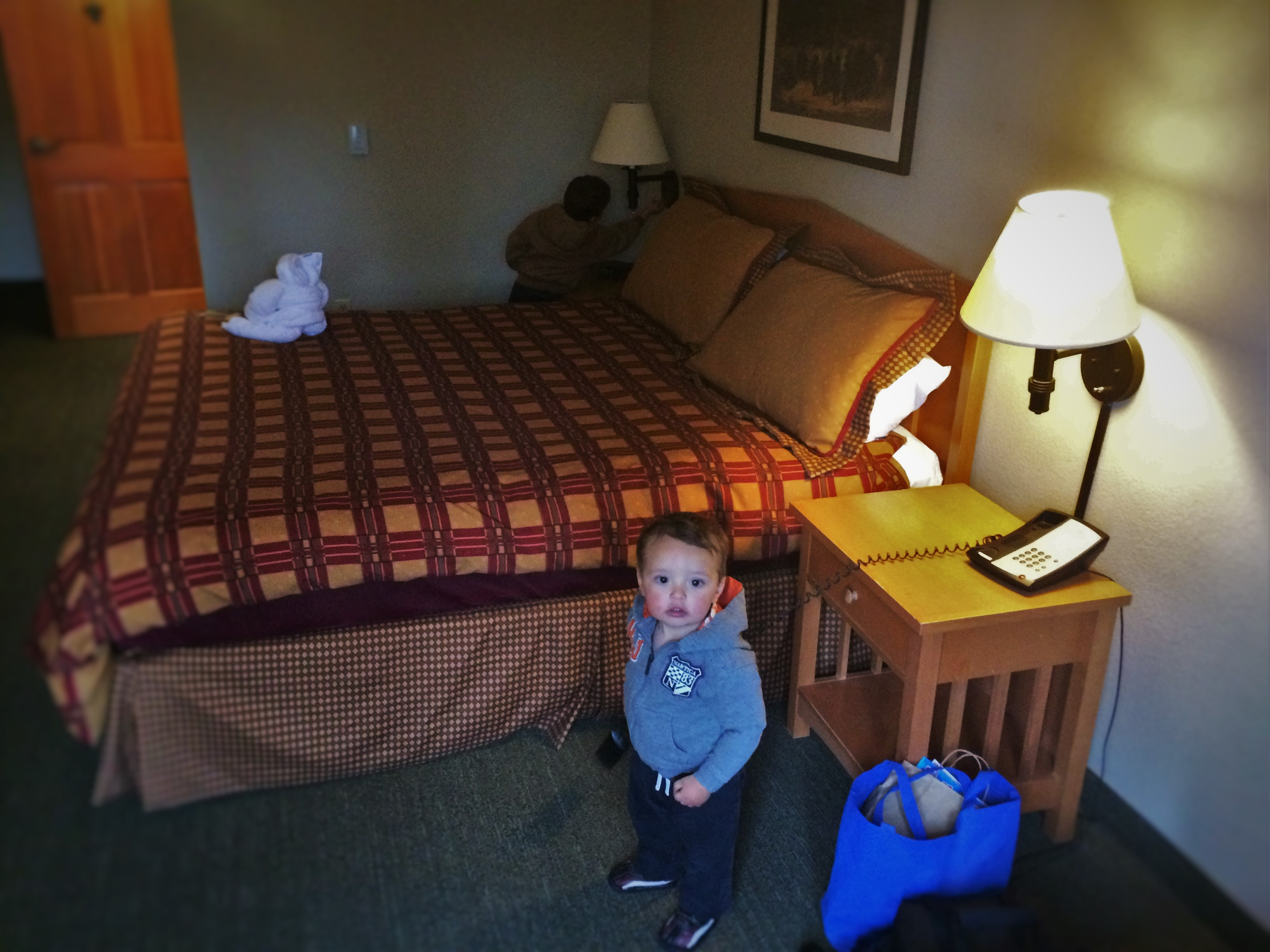 TinyMany in hotel room at Wuksachi Lodge in Sequoia National Park 1