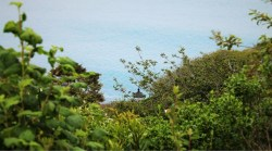 Trinidad Head Lighthouse from bluff 2traveldads.com