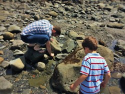 Chris Taylor and LittleMan at tide pools at Battery Point Lighthouse Crescent City 1