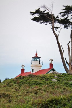 Fog at Battery Point Lighthouse Crescent City 1
