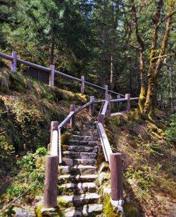 Hiking walkway at Oregon Caves National Monument