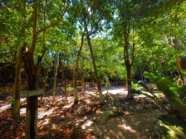 Mouth of Cenotes Dos Ojos Playa del Carmen Mexico 4