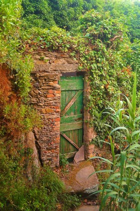 Hidden Doorway Cinqe Terre Italy 1e