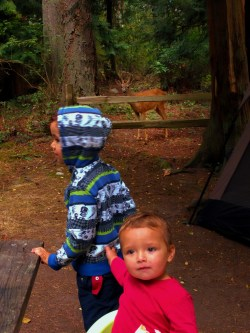 Taylor Kids Camping with deer at Washington Park Anacortes 3