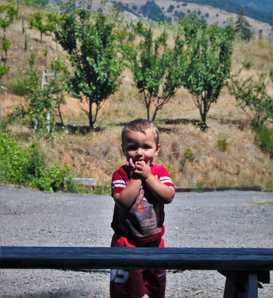 TinyMan at AniChe Cellars Underwood Columbia River Gorge 1