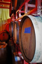 Wine Barrels at Family Friendly Wine Tasting at AniChe Cellars Underwood Columbia River Gorge 2