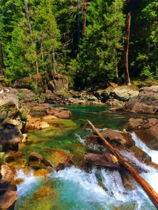 Clear water and colorful rocks at Silver Falls Mt Rainier National Park 4