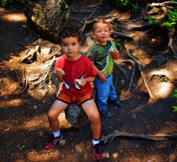 Taylor Kids having picnic at Silver Falls Mt Rainier National Park 1