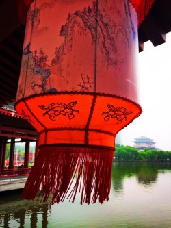 Chinese lanterns and reflecting pond at Tang Paradise Xian Imperial Garden 2