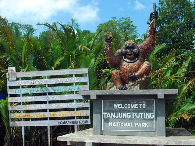 Tanjung Puting National Park Indonesia Tourism