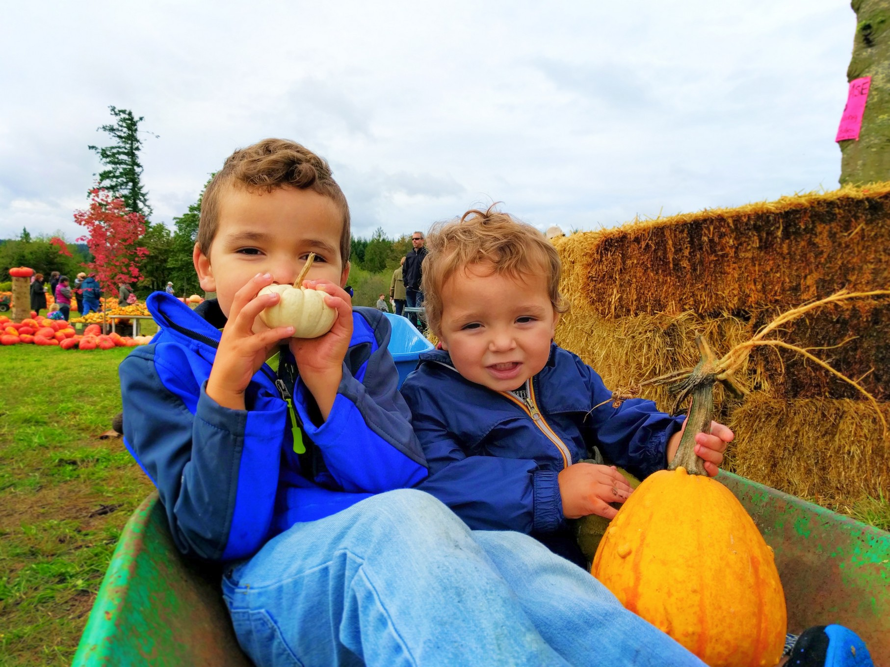 Taylor Family Pumpkin patch Fall Traditions