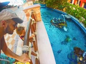 Rob Taylor and son watching turtles at Playa Grande