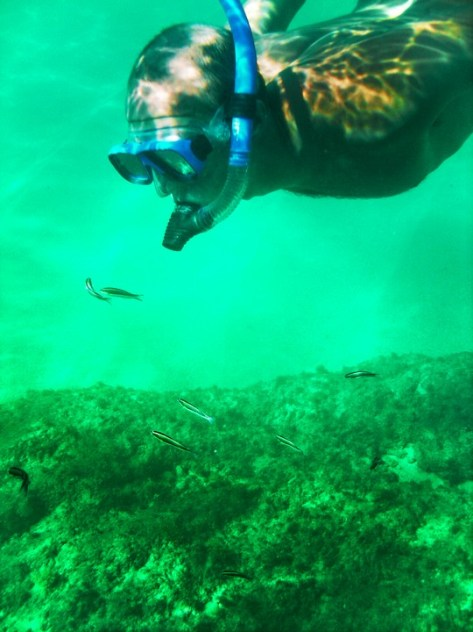 Rob Taylor snorkeling at Lovers Beach Cabo San Lucas