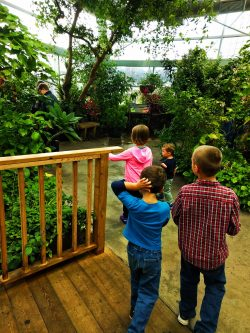 Taylor Kids in Butterfly Garden in Atrium at Tennessee Aquarium 1