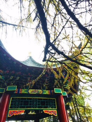 Buddhist Temples at Taibai Mountain National Park 12