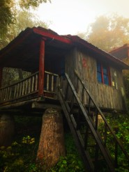 Trekking Cabins at Taibai Mountain National Park 1