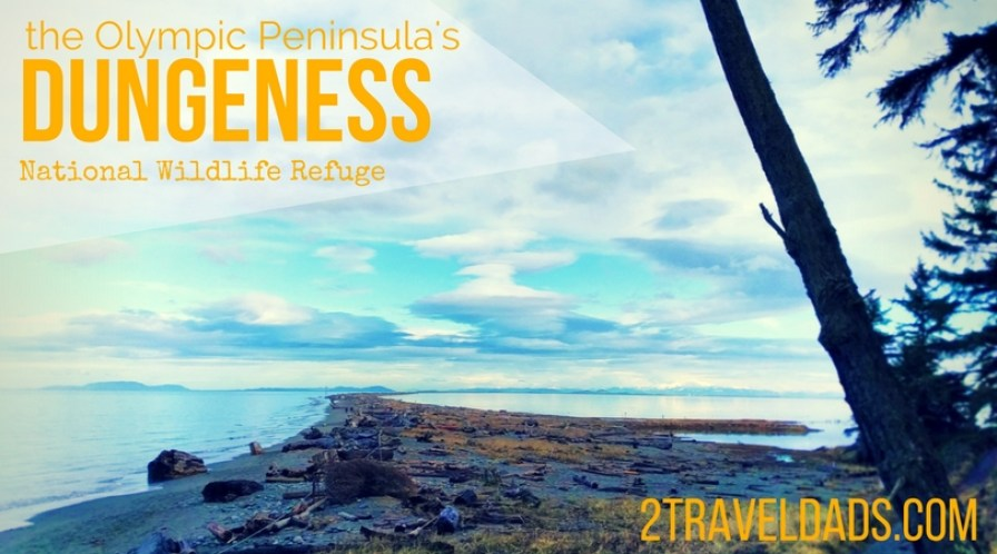 The Dungeness National Wildlife Refuge on Washington's Olympic Peninsula is an incredible preserve for hiking, whale watching and experiencing Pacific Northwest nature at its finest. 2traveldads.com