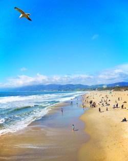 Looking north at Santa Monica Pier and Beach 1