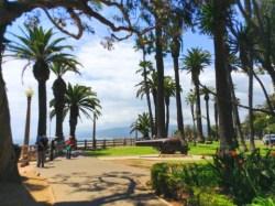 Santa Monica Bluffs walk with cannon 04