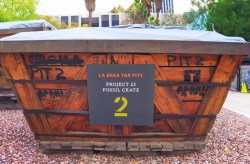 LaBrea Tar Pits Project 23 dig site fossil crate 1
