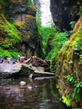 Mossy rocks at Oneonta Creek Columbia Gorge Waterfalls Area 3