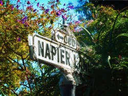 Napier Lane sign on Telegraph Hill Greenwich Staircase 1