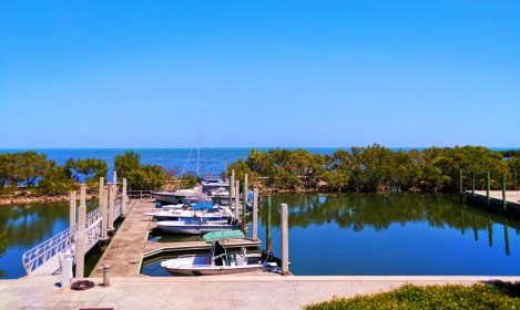 Marina at Biscayne National Park 1